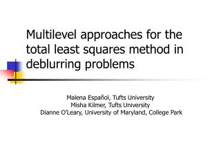 Multilevel approaches for the total least squares method in deblurring problems