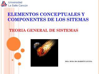 ELEMENTOS CONCEPTUALES Y COMPONENTES DE LOS SITEMAS