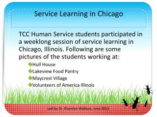 Service Learning in Chicago