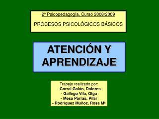 2º Psicopedagogía, Curso 2008/2009 PROCESOS PSICOLÓGICOS BÁSICOS