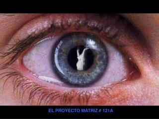 EL PROYECTO MATRIZ # 121A