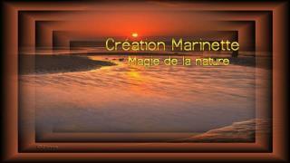 V.SPL. The magic of nature
