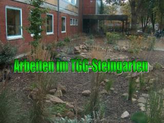 Arbeiten im TGG-Steingarten