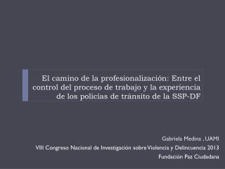 Gabriela Medina , UAMI VIII Congreso Nacional de Investigaci�n sobre Violencia y Delincuencia 2013