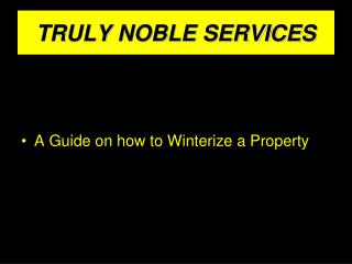 TRULY NOBLE SERVICES
