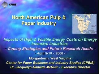 North American Pulp  Paper Industry