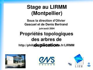 Stage au LIRMM (Montpellier)