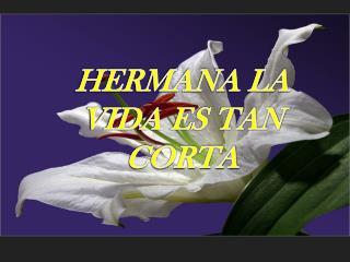 HERMANA LA VIDA ES TAN CORTA