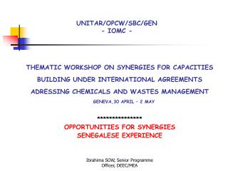 THEMATIC WORKSHOP ON SYNERGIES FOR CAPACITIES  BUILDING UNDER INTERNATIONAL AGREEMENTS