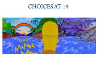 Choices at 14