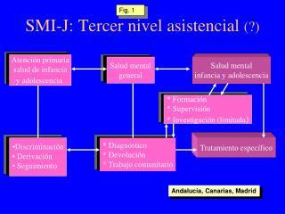 SMI-J: Tercer nivel asistencial  (?)