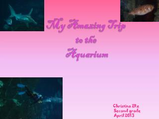 My Amazing Trip to the  Aquarium