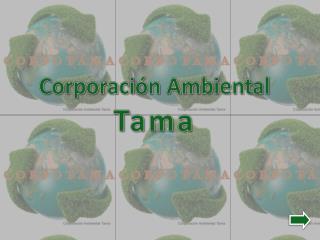 Corporación Ambiental  Tama
