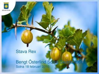 Stava Rex Bengt Österlind Solna Skoldatatek Solna 18 februari 2010