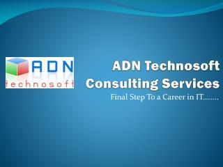 ADN Technosoft  Consulting Services