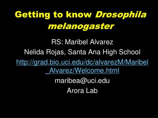 Getting to know Drosophila melanogaster