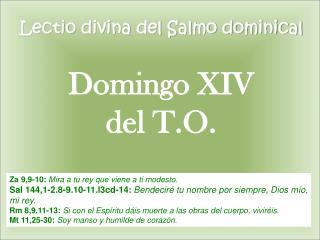 Lectio  divina del Salmo dominical Domingo XIV  del T.O.