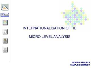 INTERNATIONALISATION OF HE MICRO LEVEL ANALYSIS