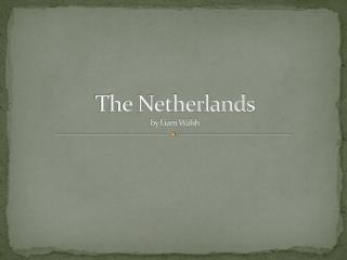 The Netherlands  by Liam Walsh