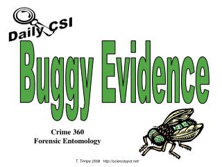 Buggy Evidence