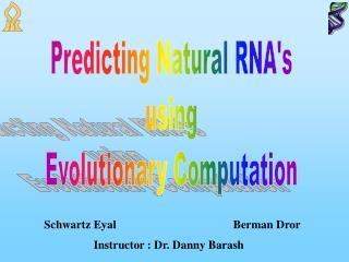 Predicting Natural RNA's using Evolutionary Computation