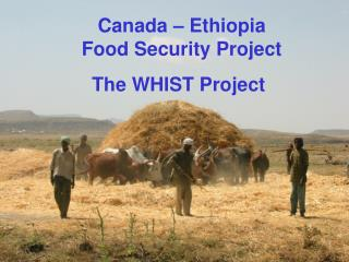 Canada – Ethiopia Food Security Project