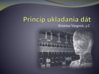 Princíp ukladania dát