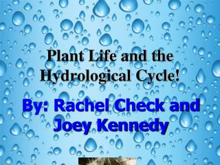 Plant Life and the Hydrological Cycle!