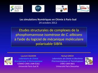 Laurent SALMON Laboratoire de Chimie Bioorganique et Bioinorganique ICMMO CNRS-UMR 8182