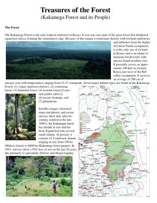 Treasures of the Forest (Kakamega Forest and its People)