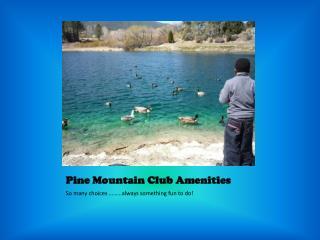 Pine Mountain Club Amenities