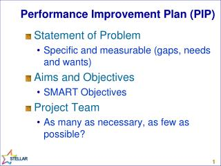 Performance Improvement Plan (PIP)