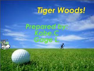 Tiger Woods!