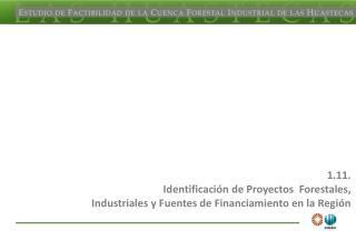 1.11. Identificaci n de Proyectos  Forestales,  Industriales y Fuentes de Financiamiento en la Regi n