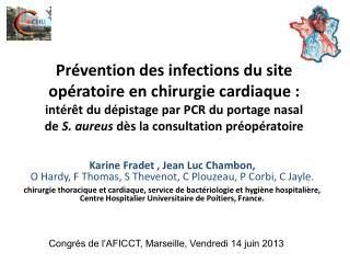 Karine Fradet , Jean Luc Chambon,  O Hardy, F Thomas, S Thevenot, C Plouzeau, P Corbi, C Jayle.