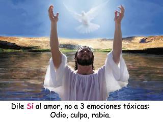 Dile  Sí  al amor, no a 3 emociones tóxicas: Odio, culpa, rabia.