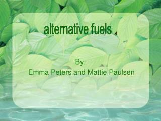 By:  Emma Peters and Mattie Paulsen