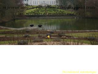 18 février 2009 : le Parc Floral d'Orléans paraît triste sans ses fleurs de printemps ou d'été