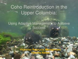 Coho Reintroduction in the Upper Columbia: Using Adaptive Management to Achieve Success