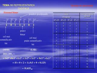 TEMA 10 REPREZENTAREA  DIGITAL Ă