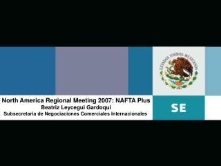 North America Regional Meeting 2007: NAFTA Plus Beatriz Leycegui Gardoqui