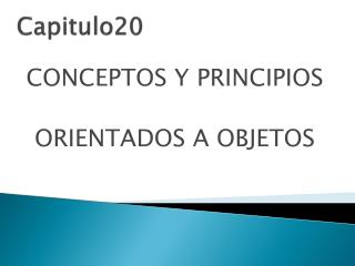 C apitulo20