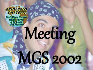 Meeting MGS 2002