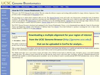 Go to the genome browser...