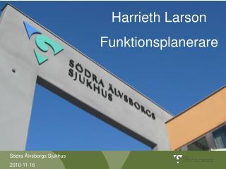 Harrieth Larson Funktionsplanerare