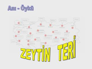 ZEYTİN   TERİ