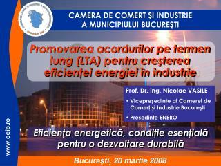 Promovarea acordurilor pe termen lung (LTA) pentru creşterea eficienţei energiei în industrie