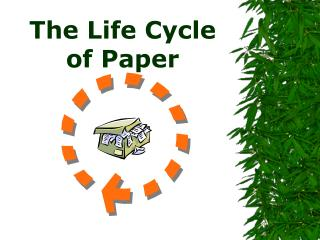 The Life Cycle of Paper