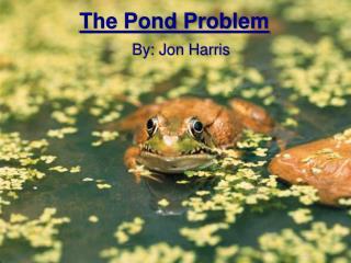 The Pond Problem