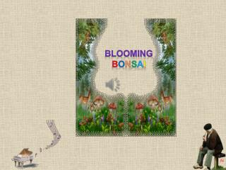 Blooming B o n s a i